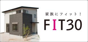 FIT30